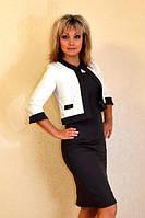Костюм батал (платье+пиджак) с рукавом три четверти в расцветках 318