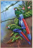Картина для рисования стразами Diamond painting Алмазная вышивка алмазами мозаика попугаи