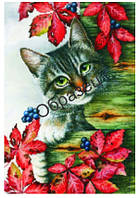 """Схема для вышивки нитками """"Котик"""""""