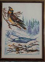 Картина «Зимняя птица» вышитая крестом ручной работы 34х24 см