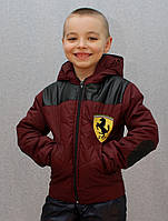 Курточка на мальчика демисезонная бордо, фото 1