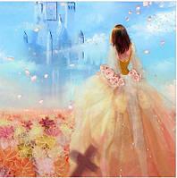 Картина для выкладывания камнями 40*50 мозаика принцесса и замок