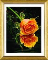 """Вышивка крестиком """"Желтая роза на воде"""""""