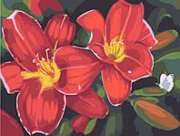 """Картины по номерам на холсте """"Красные лилии"""" 30х40см"""