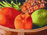 """Картины по номерам на холсте """"Тропические фрукты"""" 30х40см"""