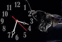 """Часы-картина """"Друг"""" 30х45 см"""