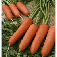 Насіння моркви Каріні, 50 г