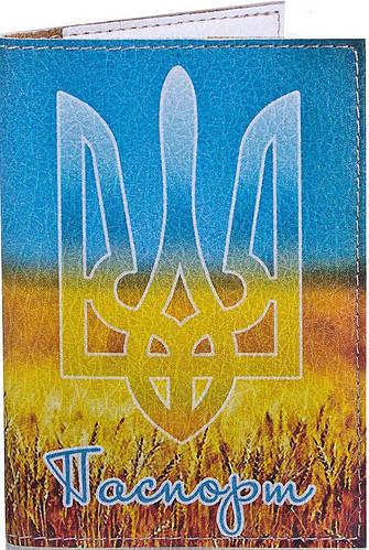 Интересная обложка для паспорта унисекс PASSPORTY (ПАСПОРТУ) KRIV144