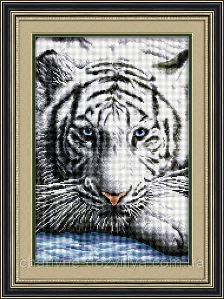 вышивки Бенгальский тигр