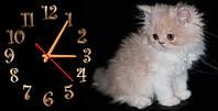 """Часы-картина """"Пушок"""" 30х60 см красивый подарок"""