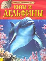 Киты и дельфины  Детская энциклопедия