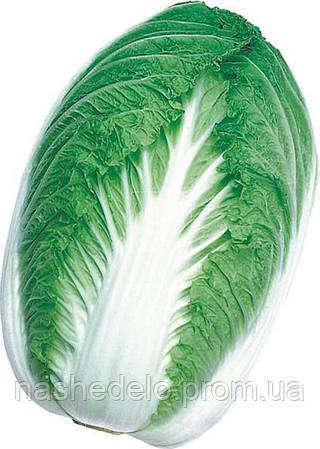 Семена пекинской капусты Паркин F1 2500 семян Takii Seed