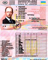 Водительское удостоверение Яценюк Арсений