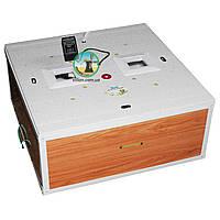 Курочка Ряба 130 цифровой