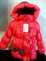 Куртка  длявочки  детская осенняя