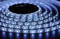 Светодиодная лента SMD 3528 (60 LED/m) IP54 Premium