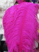 Перо страуса.Цвет Розовый.Размер 45-50cм. Цена за 1шт.
