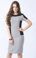 Женское трикотажное платье с коротким рукавом черного цвета в мелкий горошек. Модель 444 Mirabelle