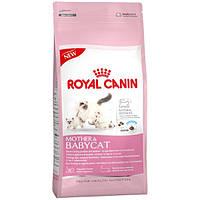 Royal Canin Mother and Babycat для котят от 1 до 4 месяцев  - 4 кг