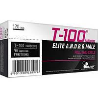 Повышение тестостерона T-100 Hardcore (120 caps)