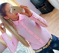 Модная женская блузка, украшенная молниями на рукавах, сезон весна-осень, рубашка, цвет - розовый