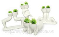 Травянчики двойные бел. / керамический травянчик / hair man plant, фото 1