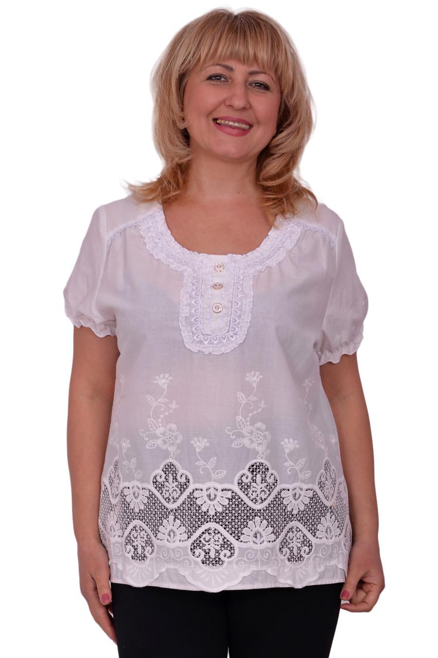 Блузка Туника Фото В Нижнем Новгороде