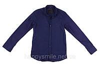 Модная рубашка Philipp Plein, мужская