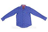 Мужская рубашка Armani Jeans, Print Shirt