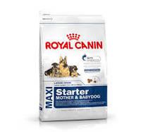 Royal Canin (Роял Канин) Maxi Starter - 15 кг