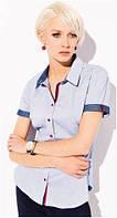 Блузка, кофточка женская, рубашка Zaps 2015