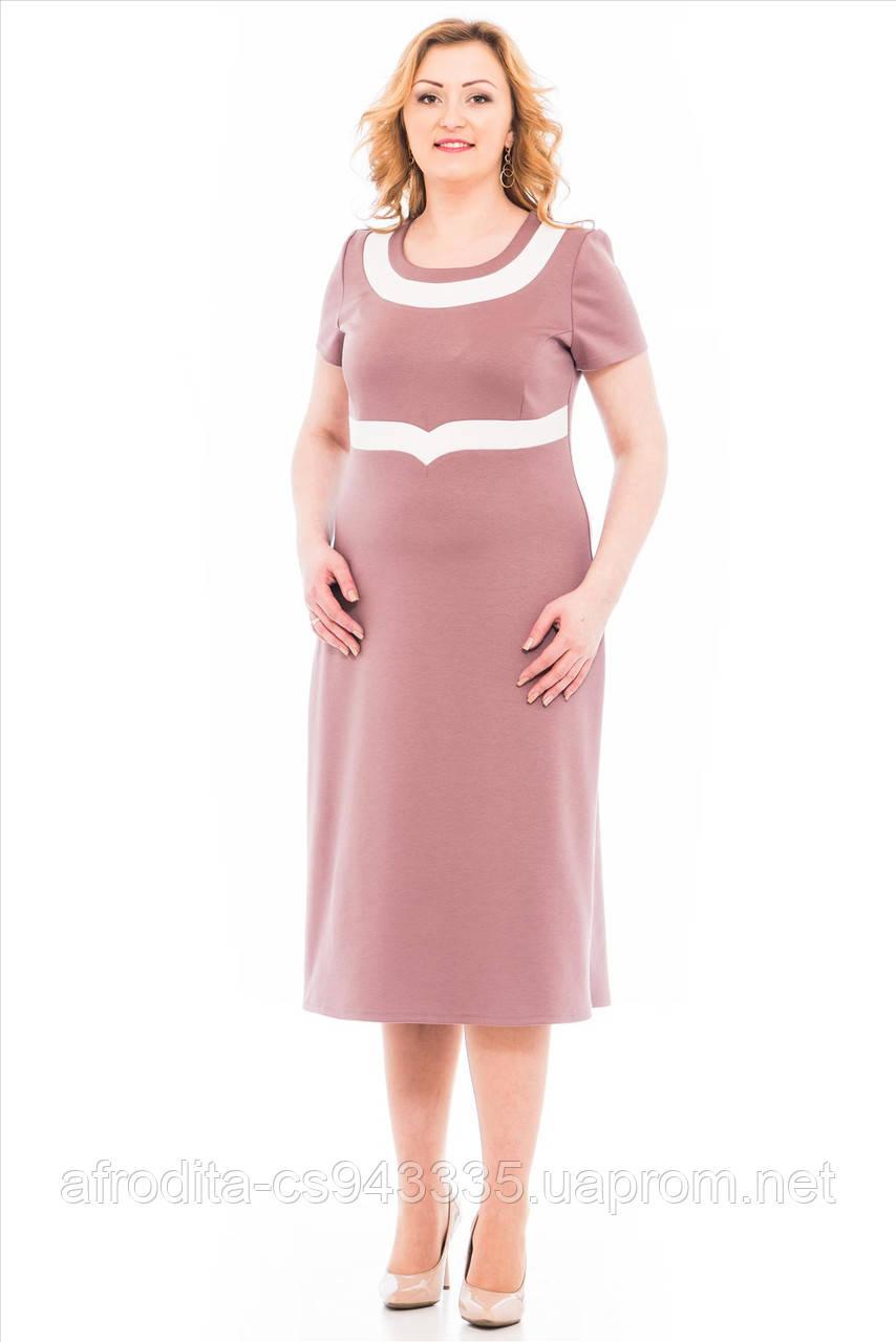 Лариса Одежда Больших Размеров Доставка