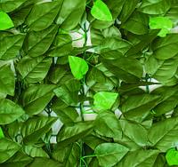 """Декоративное покрытие """"Молодые листья"""""""