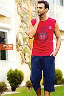 Мужская пижама, костюм для дома и отдыха футболка и бриджи Sahinler 21781