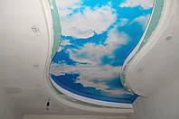 фото тараканы на натяжном потолке