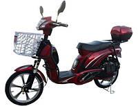 Велосипед с электродвигателем - скутер 48 вольт. мощность мотора 350 W Vega CITY CAT-2