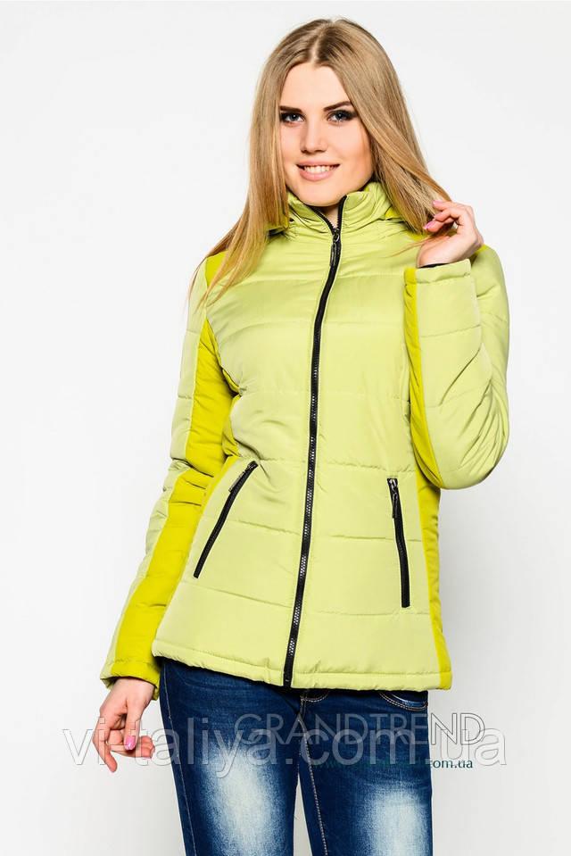 Купить куртку в магазине женскую осень модные юбки лето
