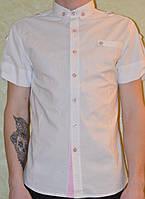 Рубашка мужская молодежная с коротким рукавом