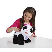 Интерактивная игрушка Малыш Панда Pom Pom серии FurReal Friends от Hasbro