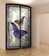 "Радиусный шкаф купе ""Butterfly"""