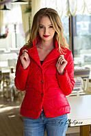 Модная куртка весна-осень в ярких расцветках 9014