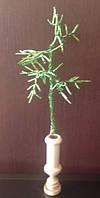 Зеленая веточка из бисера в вазе, прекрасный подарок женщине (девушке) на 8 Марта