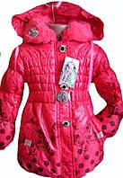 Удлиненная, демисезонная курточка для девочек ., фото 1