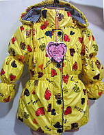 Яркая курточка для девочек  в расцветках, фото 1