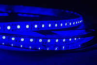 Dilux - Светодиодная лента SMD 3528 120Led/м, влагозащищенная IP65, синяя.