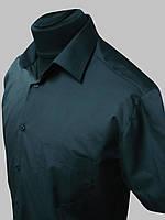 Мужская рубашка черная на короткий рукав