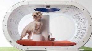 Samsung создала собачью будку класса «люкс»