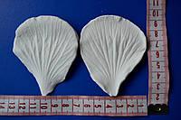 Вайнер лепестка Гибискуса L (6,5х7,5см)
