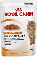 Royal Canin INTENSE BEAUTY (В ЖЕЛЕ) для взрослых кошек 85 г