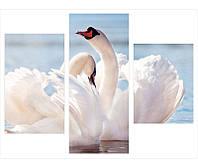 """Модульная картина на холсте """"Белые лебеди"""""""